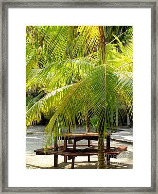 Under The Palm Tree Framed Print