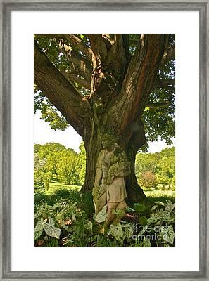 Under The Sunny Linden Tree Framed Print by Byron Varvarigos
