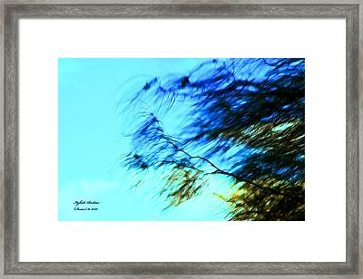 Framed Print featuring the photograph Under The Tree by Itzhak Richter