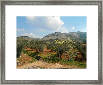 Under The Tuscan Skies Framed Print by Bill Cannon