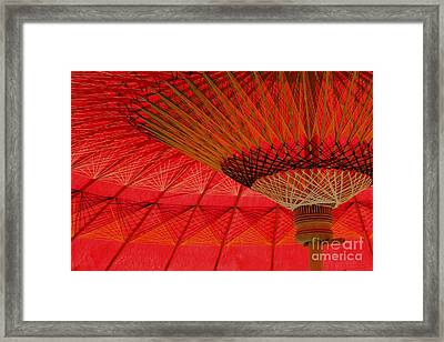 Framed Print featuring the photograph Under The Umbrella by Nola Lee Kelsey