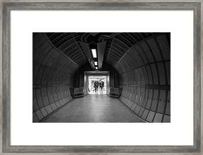 Underground Life 03 Framed Print
