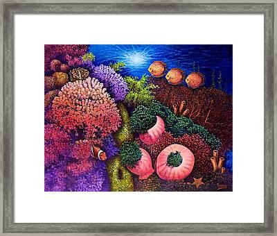 Undersea Creatures IIi Framed Print