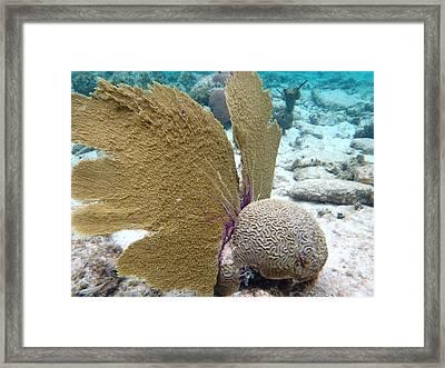 Underwater Angel Framed Print by Paulette Ingersoll