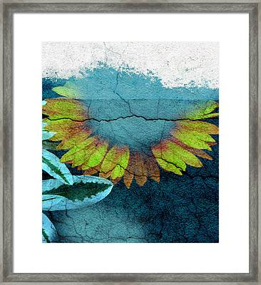 Underwater Sun Framed Print by The Artist Project