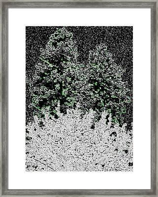 Unforecasted Snowstorm Framed Print by Will Borden
