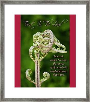 Unfurling Faith Framed Print