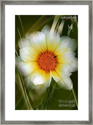 Unico Framed Print