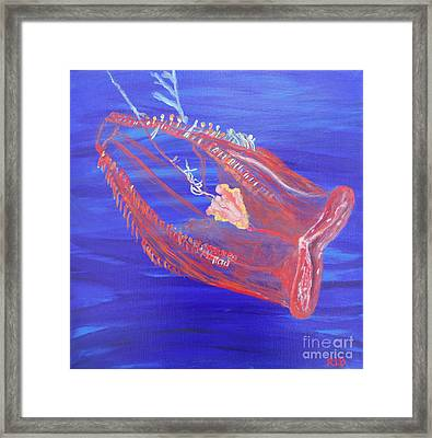 Unidentified Creature Of The Deep Framed Print by Rachel Biddlecome