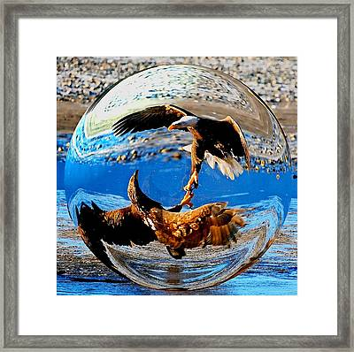Unite Framed Print by Carrie OBrien Sibley