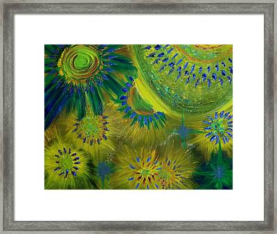Universe Of Color Framed Print by Evelyn SPATZ