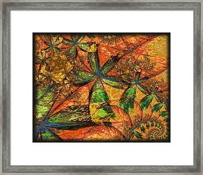 Unleashed Framed Print by Kim Redd