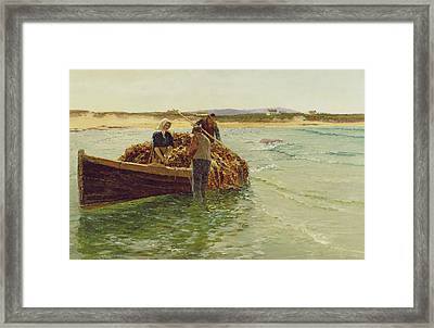 Unloading Kelp Weed  Framed Print by Charles William Bartlett