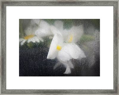 Unmarred Framed Print
