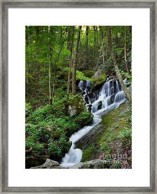 Unnamed Falls At Tremont Nc Framed Print by E Mac MacKay