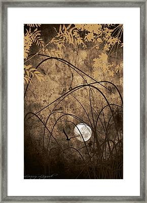 Unseen Framed Print by Lourry Legarde