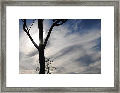 Unsustainable Lightness Of Being Framed Print by Ricardo Sousa