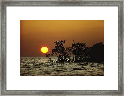 Untitled Framed Print by James P. Blair