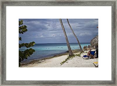 Untitled Framed Print by Nacho Miyashiro