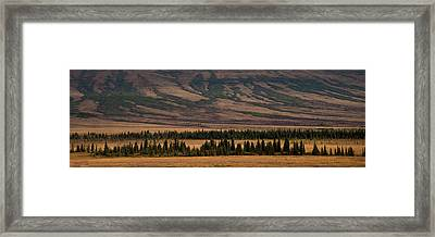 Untouched Framed Print by Michael Braxenthaler