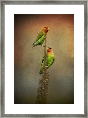 Up And Away We Go Framed Print