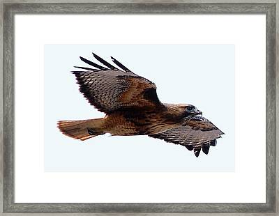 Up Close Fly-by Framed Print by Don Mann