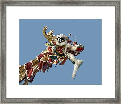 Up Close With A Dragon Framed Print