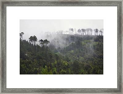 Up In The Clouds. Framed Print by Terence Davis