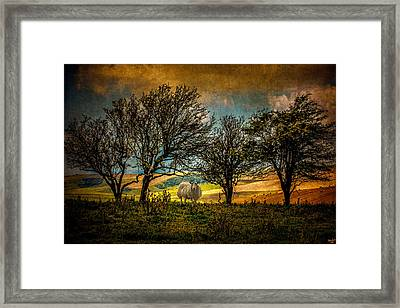 Framed Print featuring the photograph Up On The Sussex Downs In Autumn by Chris Lord