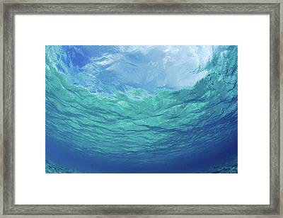 Upward To Surface Framed Print by Don King - Printscapes