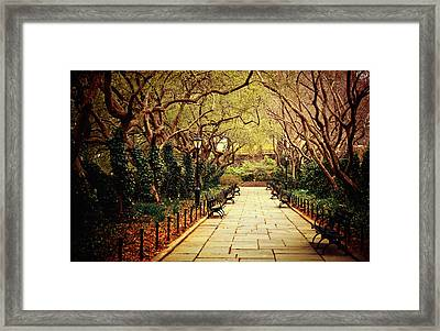 Urban Forest Primeval - Central Park Conservatory Garden In The Spring Framed Print by Vivienne Gucwa