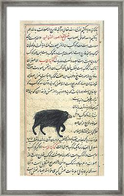 Ursa Minor, 17th Century Framed Print by Science Source