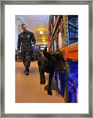 Us Navy Working Dog Jake Is Put Framed Print
