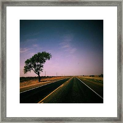 #usa #america #road #tree #sky Framed Print
