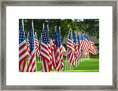 Usa Flags 26 Framed Print
