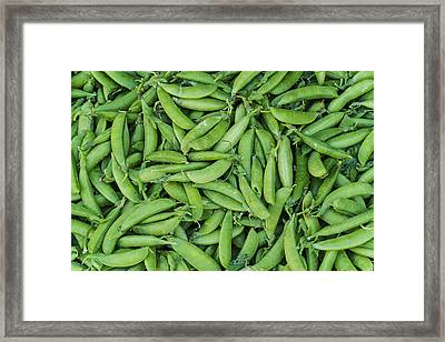 Usa, New York City, Green Beans Framed Print