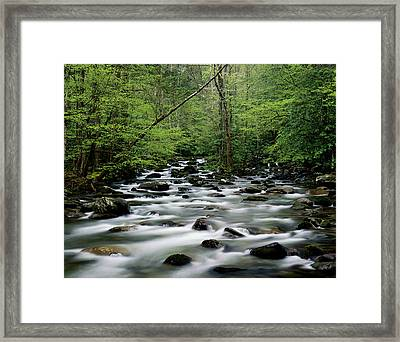 Usa, Tennesse, Great Smoky Mountains Np, Little Pigeon River Framed Print by Robert Cable
