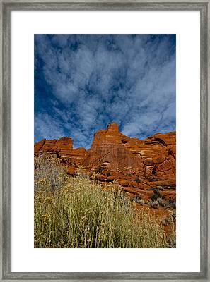 Utah Color  Framed Print