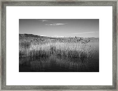 Utah Lake And Wasatch Mountains Framed Print by Tracie Kaska