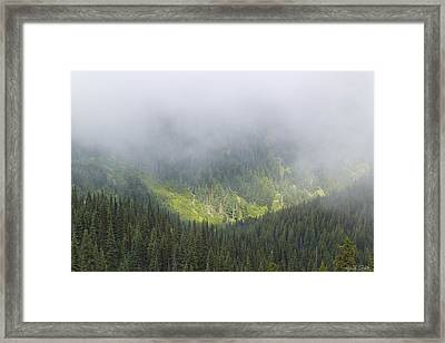 Valley Light Framed Print by Heidi Smith