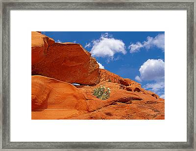 Valley Of Fire - Adventure In Color And Beauty Framed Print by Christine Till