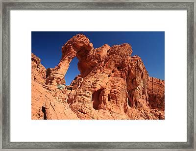 Valley Of Fire Elephant Rock Framed Print