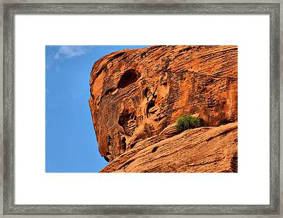 Valley Of Fire Nevada - A Special Place Framed Print by Christine Till