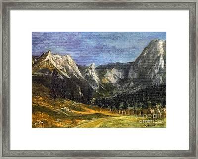 Valley Of Little Meadow Framed Print by Danuta Bennett