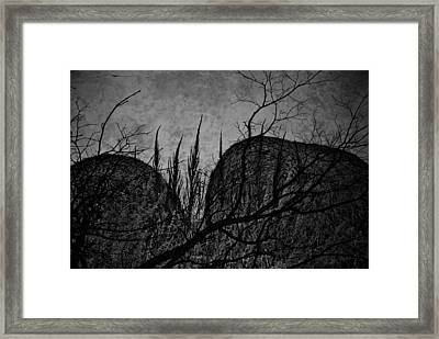 Valley Of Sticks Framed Print by Empty Wall
