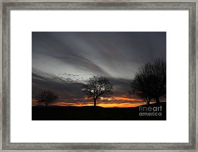 Valley Of Trees Framed Print by Everett Houser