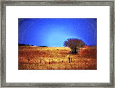 Valley San Carlos Arizona Framed Print
