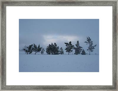 Framed Print featuring the photograph Valley Sentinels by Holly Ethan