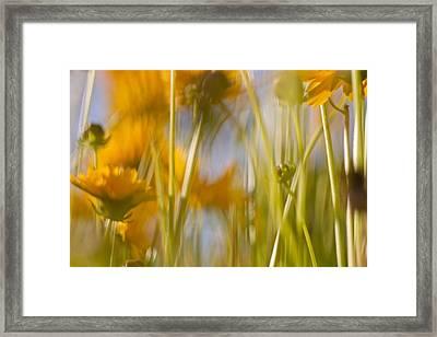 Van Gogh Remembered Framed Print by Graham Hughes