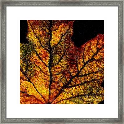 Vangogh's Autumn Maple Leaf - Square Framed Print by Wingsdomain Art and Photography